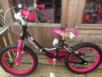 Kids Cool Chix Brand New Bike