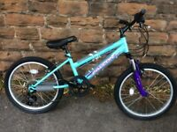"New Falcon Jade Girls Mountain Bike 20"" RRP £229"