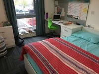 ROOM AVAILABLE IN ROPEMAKER COURT STUDENT ACCOMMODATION (STUDENTS ONLY)