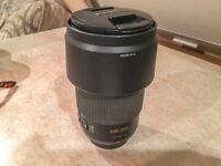 Panasonic Lumix G Vario 100-300mm f4-f5.6 Mega OIS MFT Zoom Lens