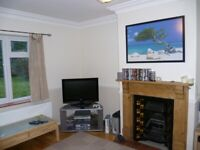 Lovely 3 Bed Semi for rent in Solihull Centre with gardens and drive