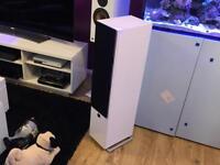 Dali zensor 7 gloss white floorstanding speakers