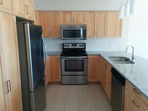 2 Bedroom apartment close to Bally Haly! St. John's Newfoundland image 2