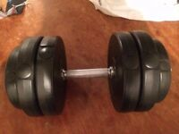 ron Dumbbell Set – Adjustable Cast Iron Free Weights with bars