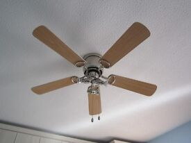 Ceiling Fan, powered, with light cluster