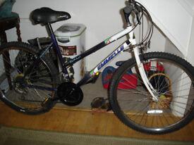 emmelle ladies mountain bike 15 speed