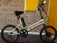 Coyote energy adults unisex electric bike