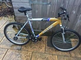 Raleigh Incognito 7000 Alloy Mountain Bike, Serviced, Free Lock, Lights, Delivery