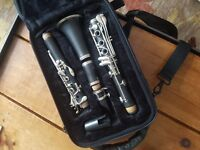Clarinet in case
