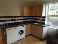 Newly renovated 1 bedroom flat