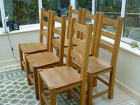 6 Contemporary Matching Honey Oak Dining Chairs
