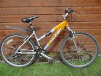 Raleigh devotion ladies bike, 26 inch wheels, 21 gears, 18 inch lightweight aluminium frame, stand