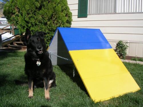 Dog Agility Equipment Mini A-Frame / A ...
