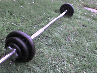 49 lb 26 kg Metal Barbell Dumbbell Weights with Bar