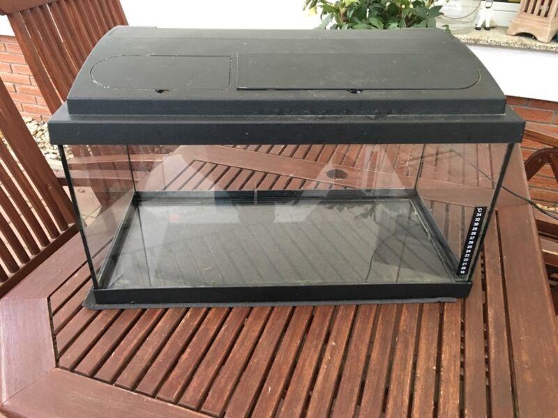 aquarium 40 liter zu verkaufen in sachsen anhalt atzendorf aquarium und aquaristikzubeh r. Black Bedroom Furniture Sets. Home Design Ideas