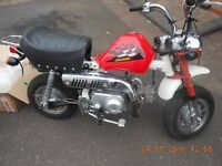 MONKEY BIKE SKY TEAM 50 MOPED 70 pit fun SWAP PART EX Needs to be registered for road very low miles