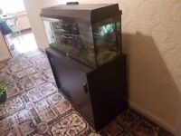 3ft Jewel Rio Fish Tank and Stand + Fish and many more!