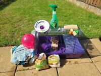 Large Hamster Cage with Accessories: ideal start for a hmaster