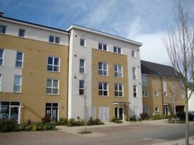 One bedroom flat for rent on Kennet Island, Reading