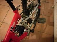 Kids Mountain Bike Apollo