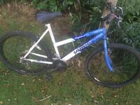 Hawk Mountain Bike size - 20 inch