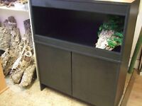 NEW 3FT BLACK VIVARIUM & STAND
