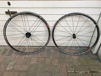 Campagnolo Khamsin Asymmetric Road Wheelset