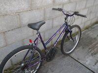 purple ladies bike 26''raleigh