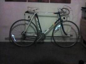 Old Raleigh racer