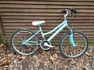 probike charisma 24 in wheels, 18 gears, 14 in frame, just serviced, new chain in good working ord