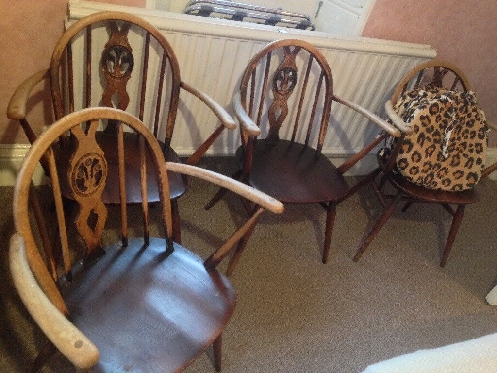 Four Ercol carver chairs with covers