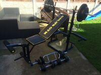 GOLDS GYM WEIGHTS BENCH WITH BARBELL, SET OF DUMBELLS AND TRICEP BAR WITH 103KG OF CAST IRON WEIGHTS