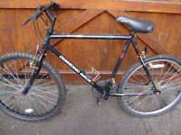DIAMOND BACK MOUNTAIN BIKE ONLY £20 FOR QUICK SALE
