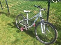 Specialized Hotrock - child's mountain bike - in great condition