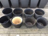 8 Large Black Planter Pots, One Terracotta