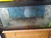Fish tank plus bits