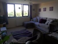 Two bed in honiton /exeter wanted