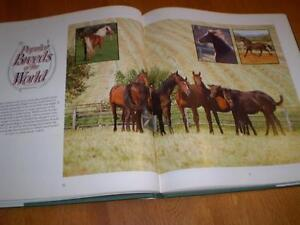 THE COMPLETE BOOK OF THE HORSE Windsor Region Ontario image 2