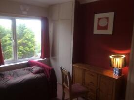 Large Single/Twin Room available for short term stays