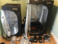 BARGAIN! Two Black Orchid hydro box light tents with equipment