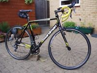 Boardman Road Sport Limited Edition - Black / Yellow