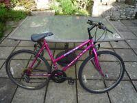 "Ladies / Girls Bike Apollo Pulse 22"", Shimano Gears."