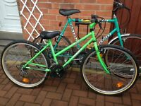 Raleigh Foot & Hollywood Giant mountain bikes for SALE