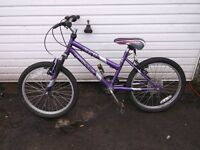 "girls mountain bike bike with 20"" wheels in full working order and just been serviced"