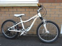 """Specialized Hotrock 20"""" Children's Bicycle Used"""
