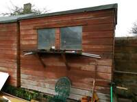 Shed 8x4