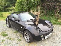 Smart Roadster (cat not included)