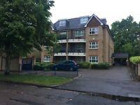 Stunning Modern Flat in Beckenham