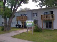 Fully renovated 2 bedroom with new reduced rent!