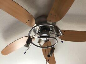 Fan with lights